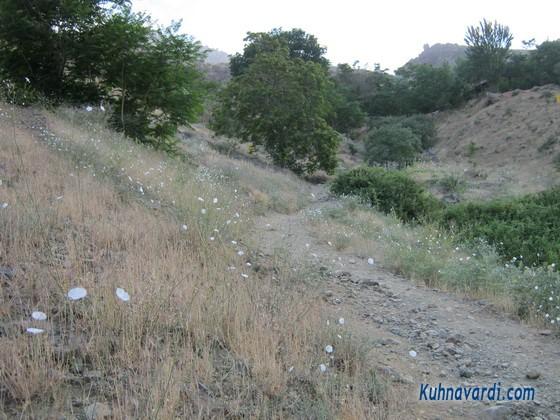 مسیر کوهپیمایی گلابدره