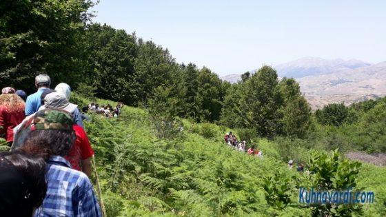 روستای داماش - محوطه بازدید از گل سوسن چلچراغ