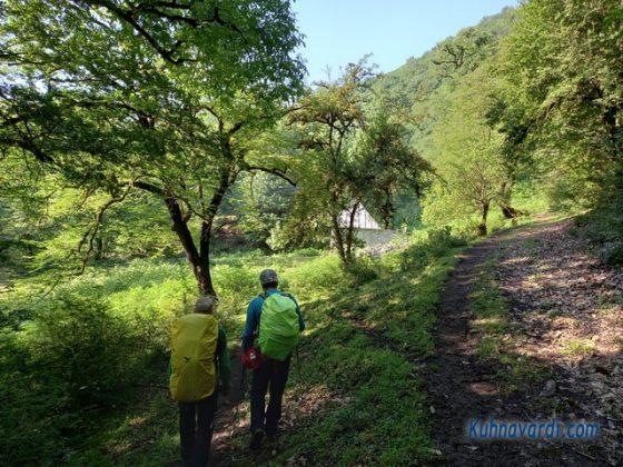 راه مالرو تیار به مراتع بالا (تلارها)