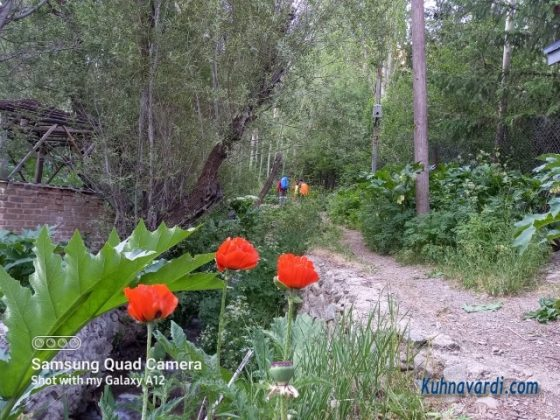 ابتدای مسیر دره